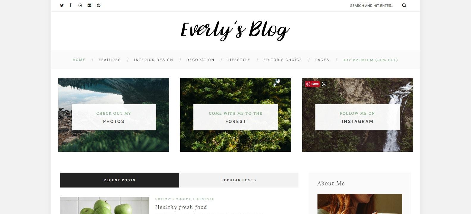 8 fashion tema za tvoj blog Everly Lite Grid